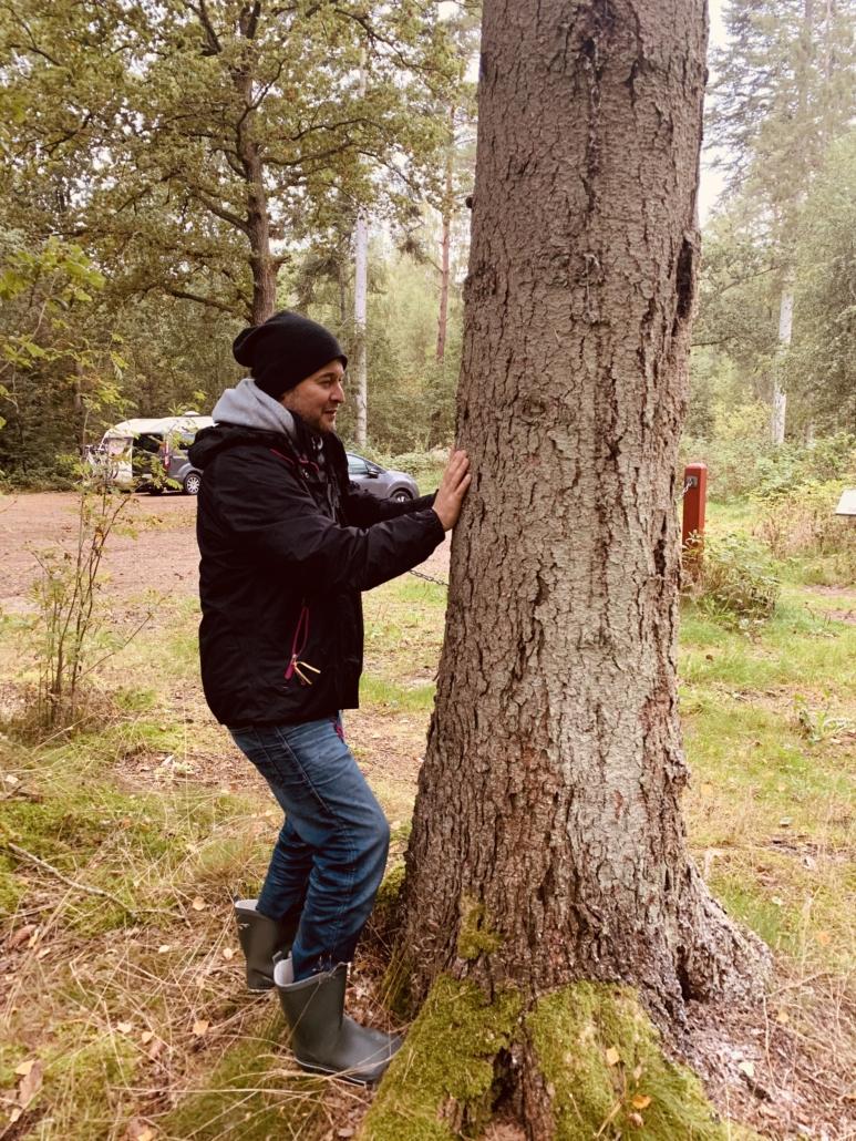 Tag i skoven og prøv denne øvelse som er baseret på principperne fra Chi Gong og kinesisk medicin. Det vil give dig mere indre ro.